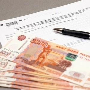 Как оформить налоговую декларацию по транспортному налогу