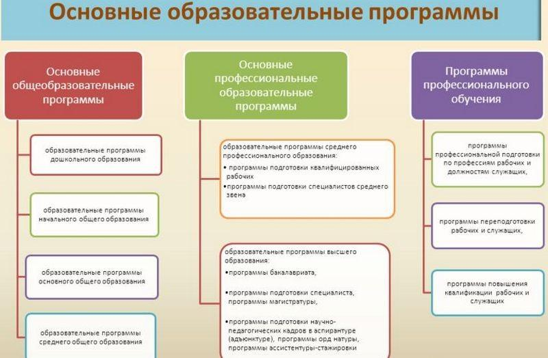 Лицензия на образовательную деятельность для ИП: как получить