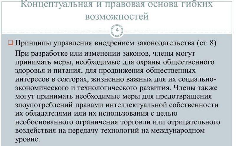 Основные принципы положения ТРИПС