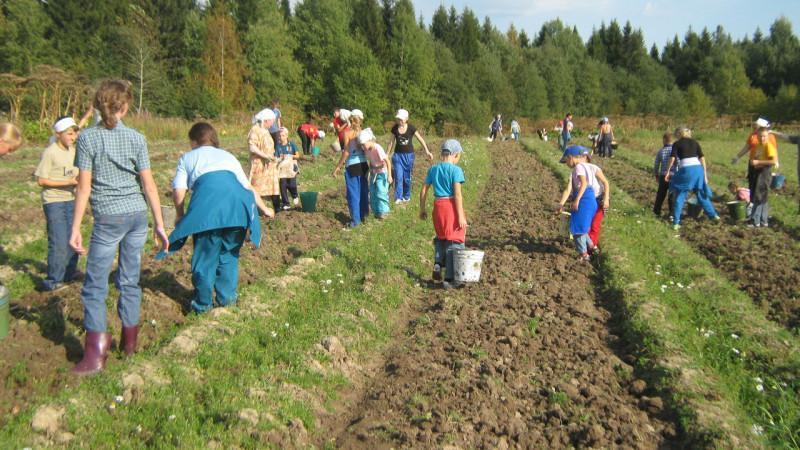 Ответственность за эксплуатацию детского труда в России