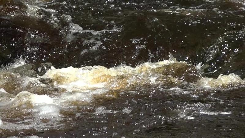 Кто и какую несет ответственность за загрязнение вод по ст 250 УК РФ