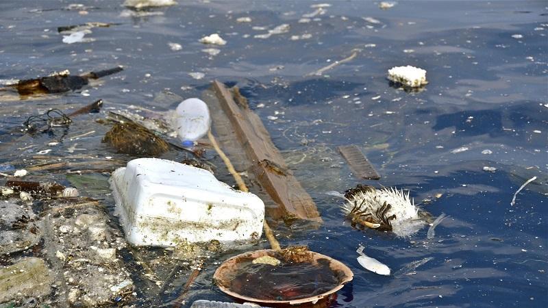 Кто попадает под ответственность за загрязнение морской среды