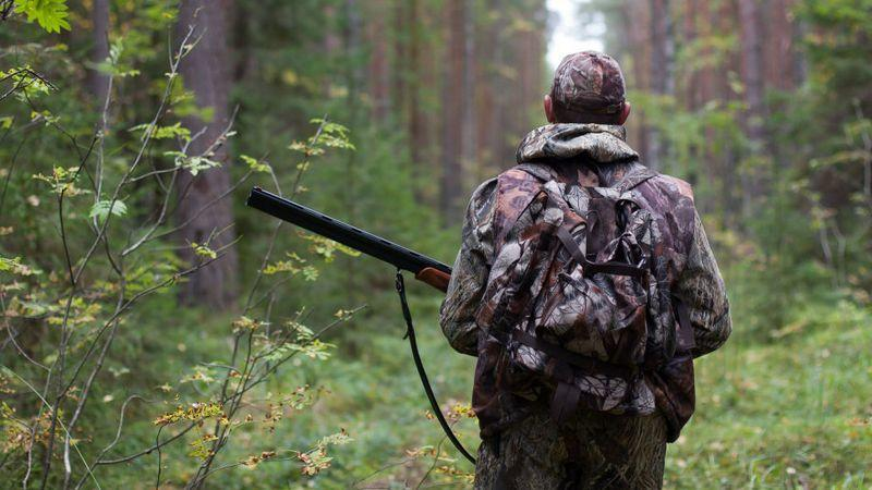 Как наказывают за незаконную охоту по статье 258 УК РФ