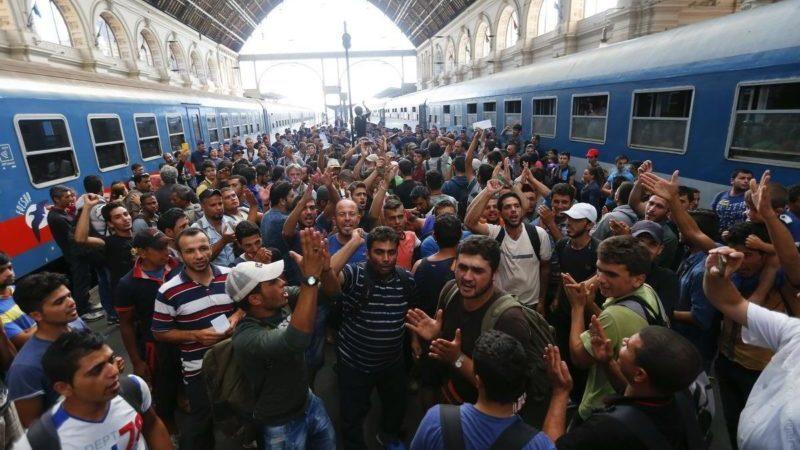 Ответственность по ст 322.1 УК РФ - Организация незаконной миграции