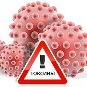 Ответственность за нарушение правил безопасности при обращении с микробиологическими агентами или токсинами