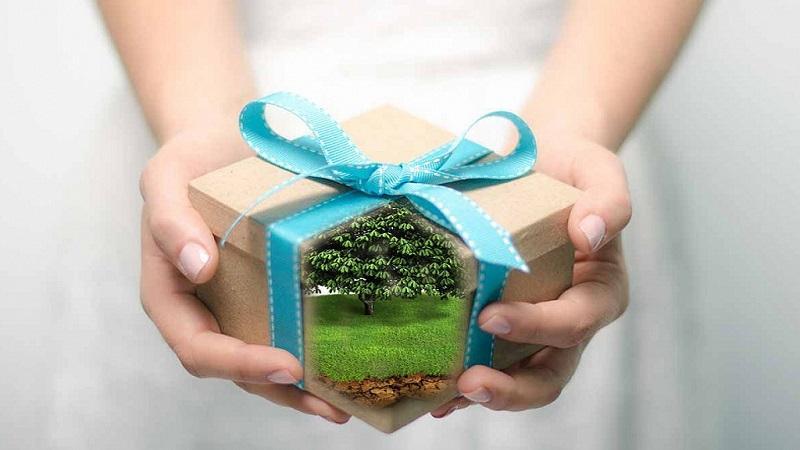 Как оформить договор дарения дома и земельного участка между родственниками