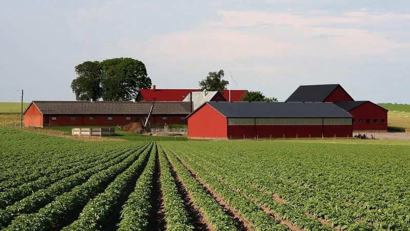 Особенности наследования имущества члена крестьянского (фермерского) хозяйства