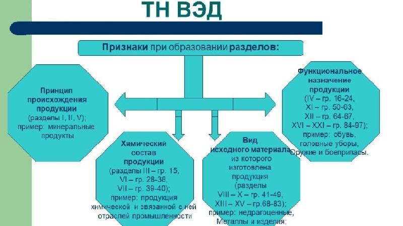 Как строится структура ТН ВЭД: значение и содержание кода